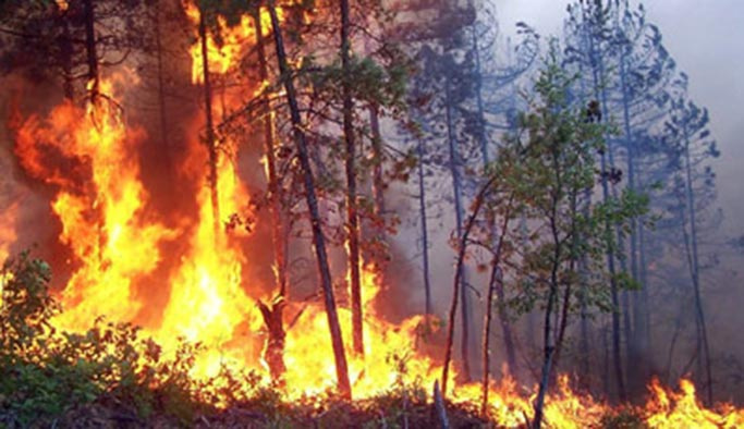 Orman yangınları konusunda uyarı