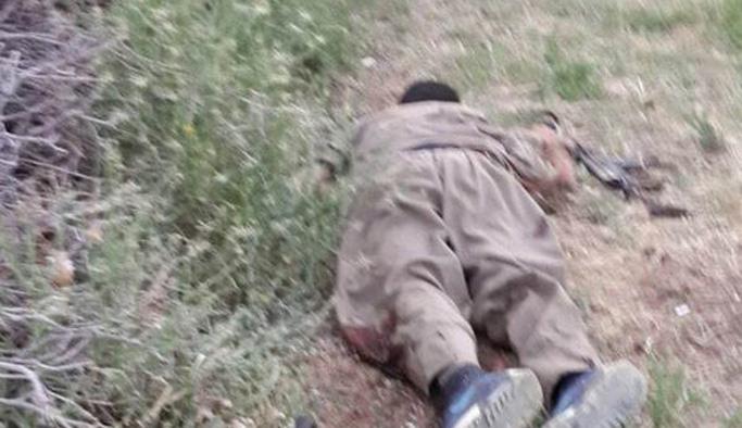PKK'nın Akdağ grubu tamamen imha edildi