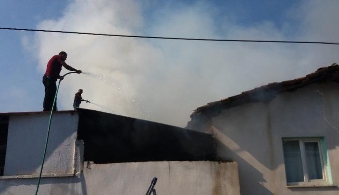 Üç binanın zarar gördüğü yanında hayvanlar telef oldu