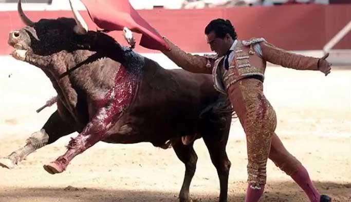 Ünlü matador Ivan Fandino aldığı boynuz darbesi sonrası hayatını kaybetti