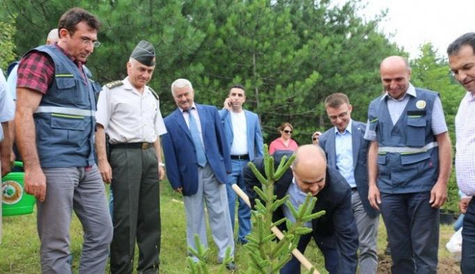 Düzce'de 15 Temmuz Demokrasi Şehitleri adına hatıra ormanı kuruldu