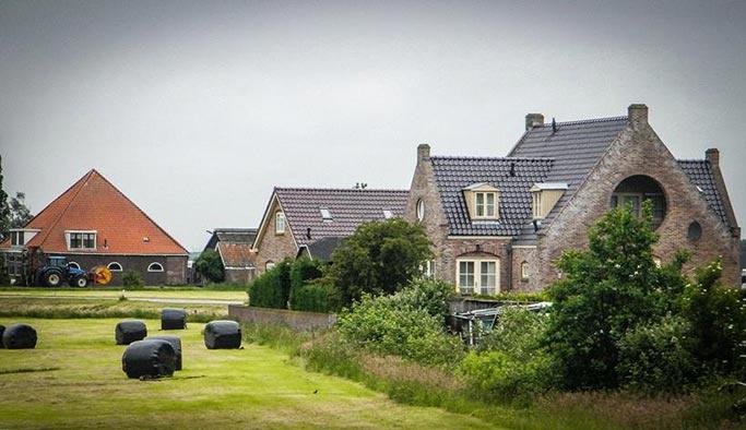 Hollanda'da 'toprağı susuz bırakan'a ceza