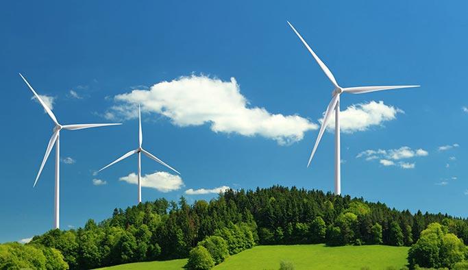 Rüzgar enerjisi ihalesine 4 Alman şirketinden teklif