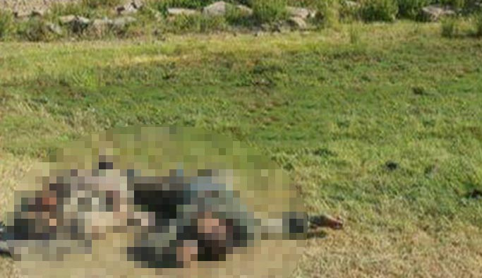 Terör örgütüne Kars ve Tunceli'den sonra Ağrı'da da ağır darbe