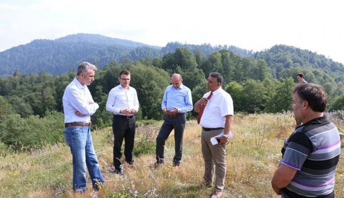 Yığılca'da Balköy bal üretim ormanı kuruluyor