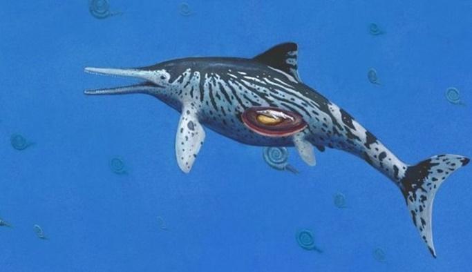 200 milyon yıllık fosilin karnında bulundu