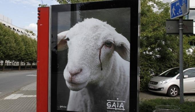 Belçika'da bayram öncesi tepki çeken afiş