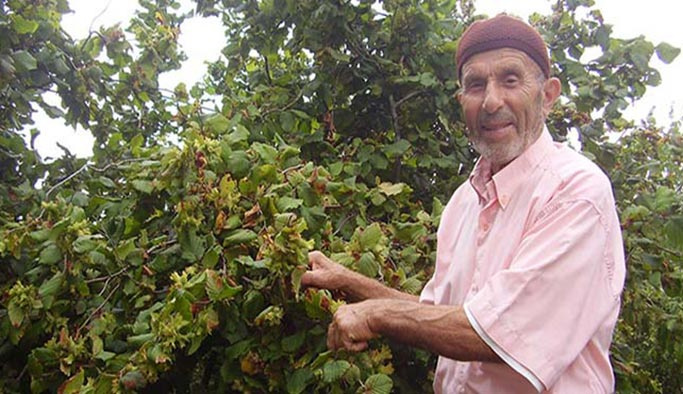 Binlerce çiftçi aileye bayram öncesi müjde