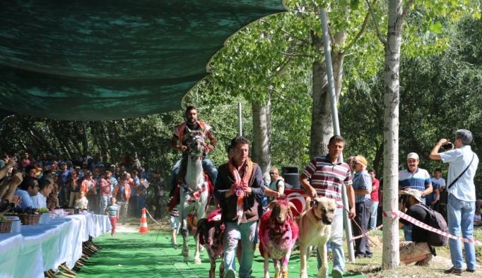Sudan Koyun Geçirme Yarışması