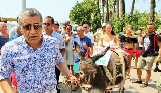 Ünlü türkücü Bodrum sokaklarında eşek gezdirdi, hayvan severler çıldırdı