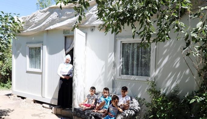 Zeytin ailesi konteynerden kurtuluyor