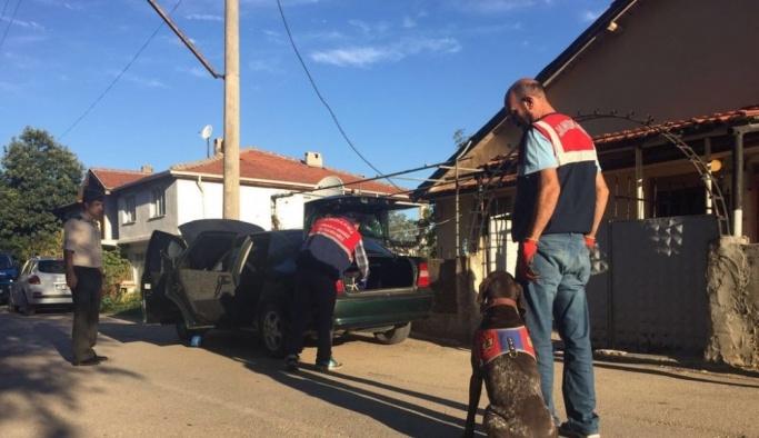 Jandarmadan köpekli uyuşturucu operasyonu