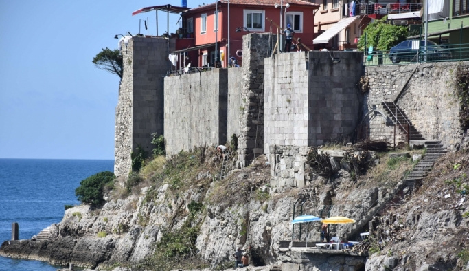Tarihi kale, ağaç köklerinden arındırılıyor