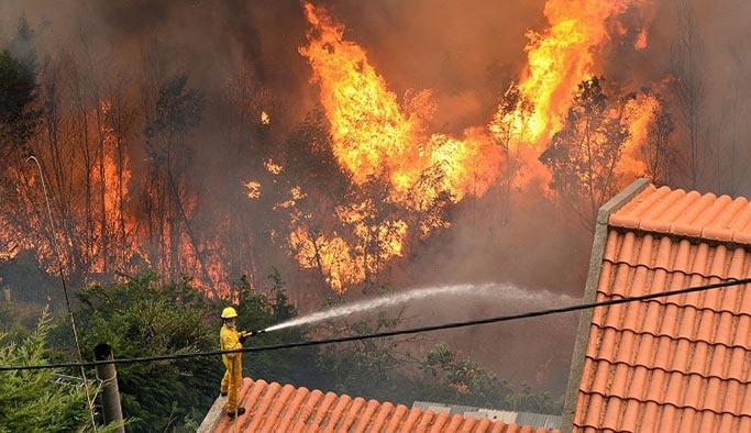 ABD'nin Kaliforniya eyaleti yanıyor, şu ana kadar 10 kişi öldü