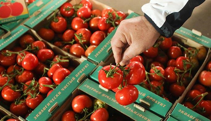 Rusya, Türk domatesini alacağı tarihi açıkladı
