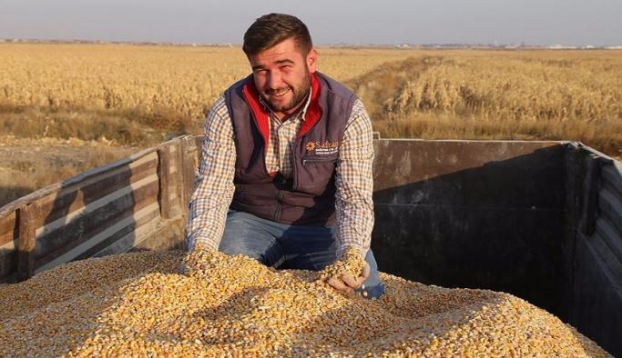 Konya Ovası'nda mısır hasadı yüz güldürüyor