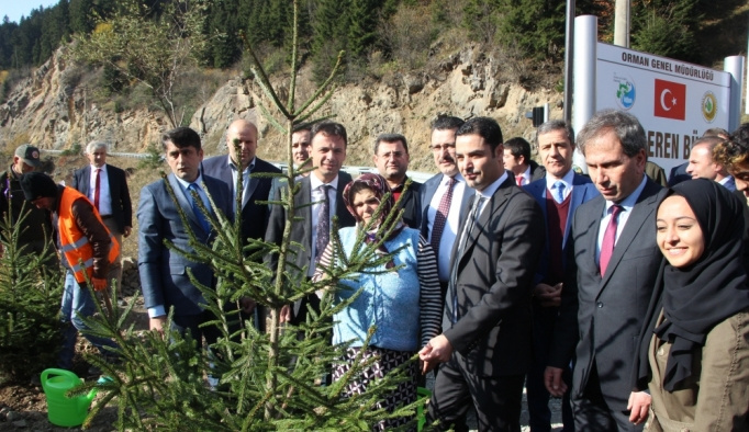 Şehit Eren Bülbül anısına hatıra ormanı oluşturuldu
