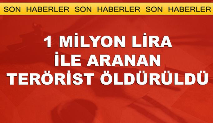 1 milyon lirayla aranan terörist öldürüldü