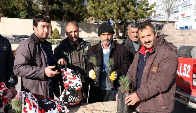 Yozgat'ta yılbaşı öncesi bin fidan dağıtıldı