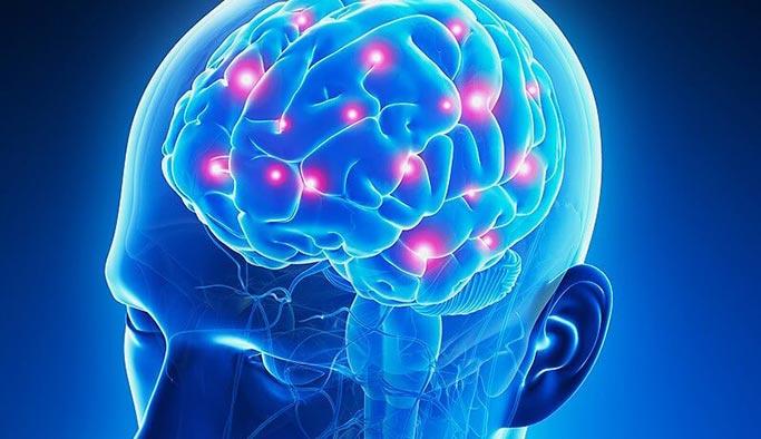 İnsan beynini görüntüleyip, laboratuvar çalışması yapıyorlar