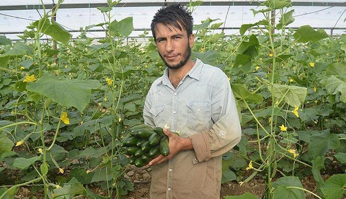 Genç çiftçilere hibe desteğinde yeni paket