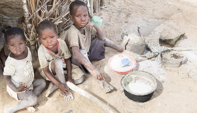 Gıda güvensizliği 124 milyon kişiyi etkiledi