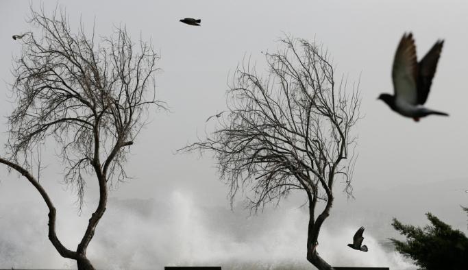 İzmir'de fırtına hayatı olumsuz etkiledi