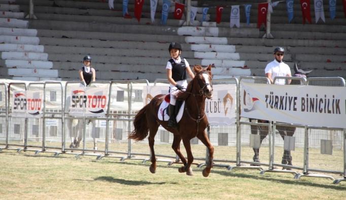 Binicilik: Engel Atlama Anadolu Ligi