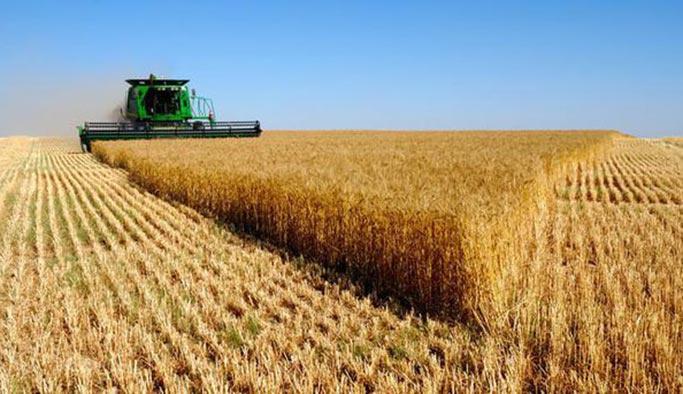 Çiftçinin destekleme ödemeleri hesaba yattı