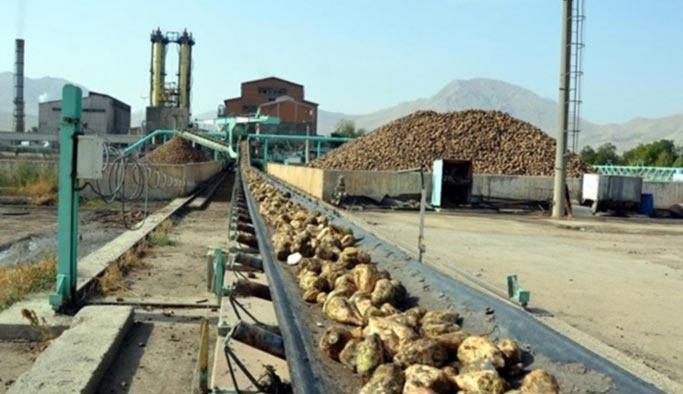 Şeker fabrikaları ilk kez devlete para kazandırdı