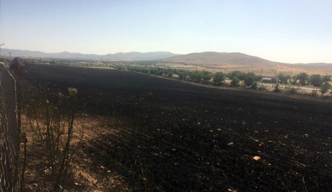 Elazığ'da buğday tarlasında yangın