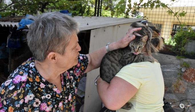 Kedisinin kurtarılışını gözyaşlarıyla izledi
