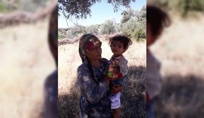 Kaybolan anneanne ve torunu dağlık alanda bulundu