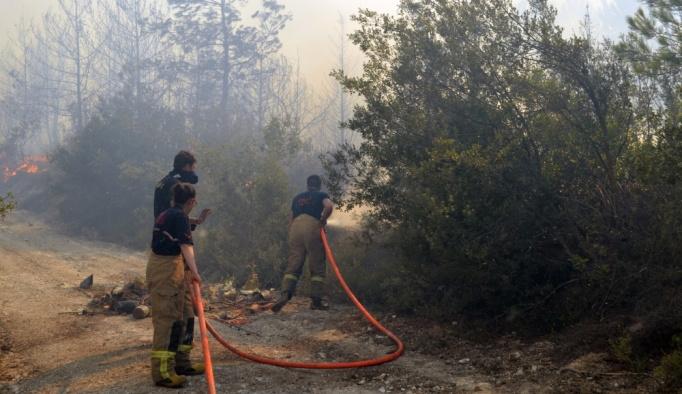 GÜNCELLEME İzmir'de orman yangını