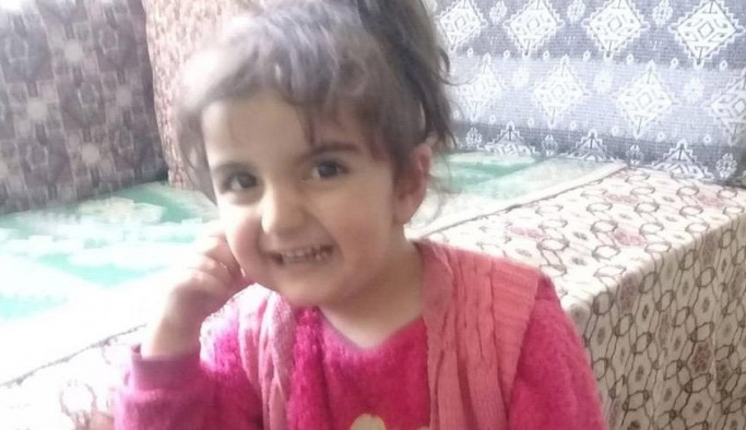 Tokat'ta kaybolan 3 yaşındaki Evrim'in katili kim çıktı