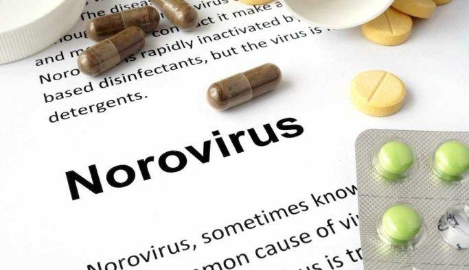 Norovirüs nedir? Norovirüs belirtileri Nelerdir?