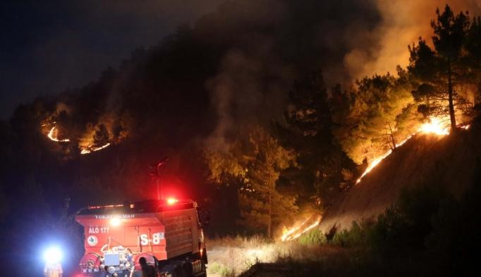 Sivas'taki orman yangını