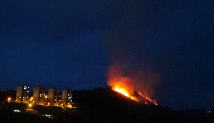 Trabzon'da makilik alanda yangın