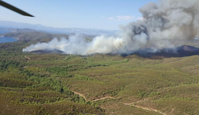 GÜNCELLEME - Muğla'da orman yangını