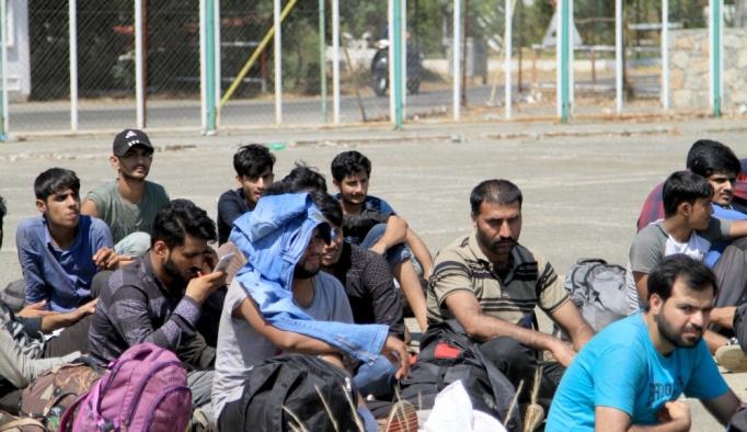 Muğla'da 73 düzensiz göçmen yakalandı