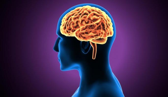 Beyin dalgalarıyla kimlik doğrulama devri