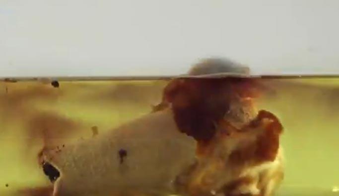 İşte ceset eriten hidroflorik asit - VIDEO