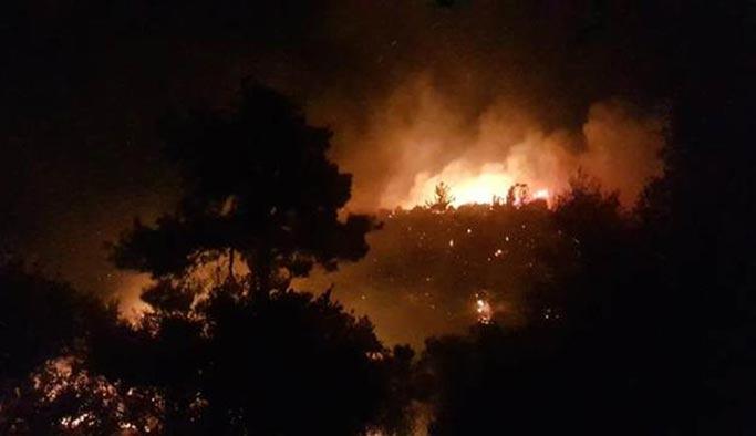 Manavgat'ta yangın, 4 mahalle tehlikede