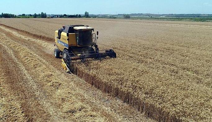 Buğday ekim alanında korkutan düşüş