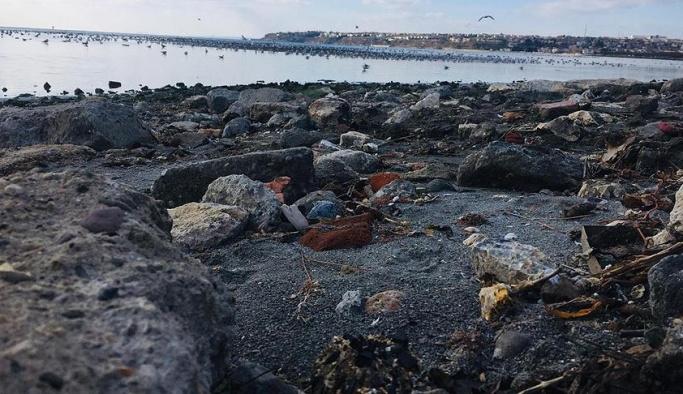 Marmara Denizi'nde korkutan gelişme