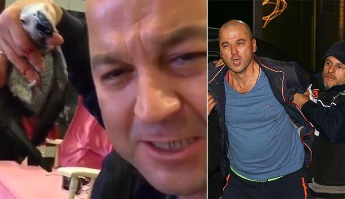 Papağana işkence eden Murat Özdemir Bakırköy'e yatırıldı