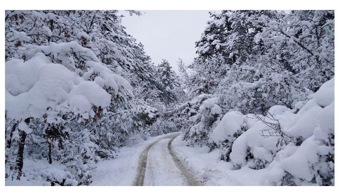 Rüyada kar görmek ne demek