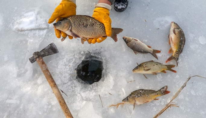 Van Gölü dondu, tehlikeli avcılık başladı