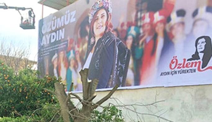 CHP'li aday seçim afişi görünsün diye ağacı kestirdi