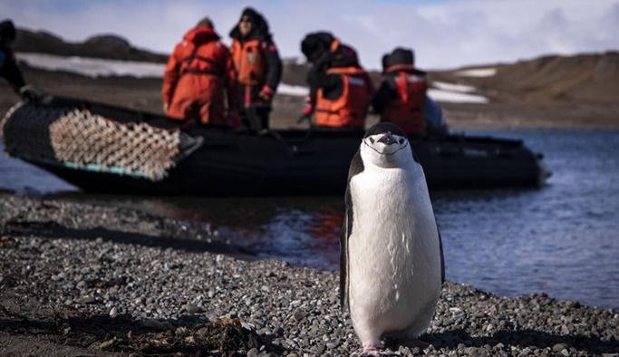 Türk bilim ekibi Antarktika'ya ayak bastı